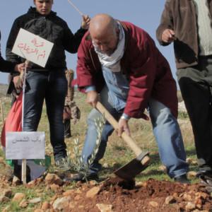 Plant a tree 9